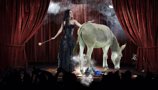 An Evening at The Cabaret.Donkey Request. by TRANS4MATICA