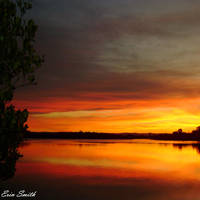Amber Dusk by engridearty