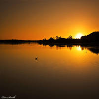 On Golden Pond by engridearty