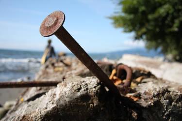Nail In A Beach Log by rantmedia