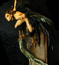 008 (2)Harpy by MADSculptor