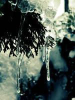 Frozen 2 by PurebloodRose