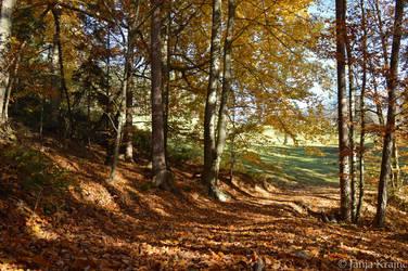 Magical autumn by PurebloodRose