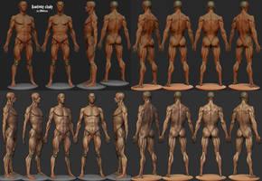 AnatomyStudy by 3DNeksus