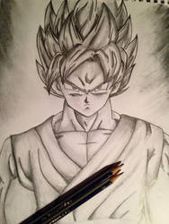 Super Saiyan God Super Saiyan Son Goku by AngelGabryel