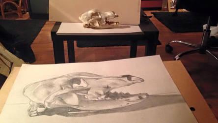 Dog Skull by AngelGabryel