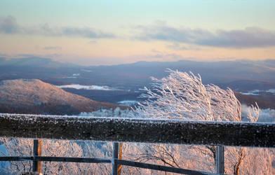 Winter by Gniii