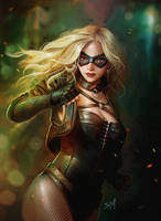 Black Canary by Anmat