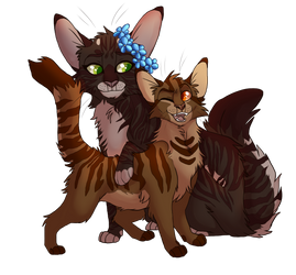 Springstar and Amberpaw by sorrelpaaws