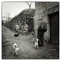 The Dying Ways - Farmer and his dogs by fuxs
