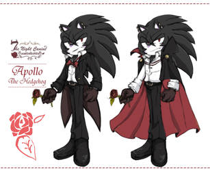 Apollo The Hedgehog [new costume design] by 1412Shadow