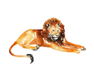 King by SALTWatercolors