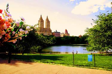 central park by Rhea-Batz