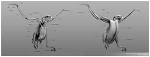 Bald Eagle Anatomy by LindseyWArt