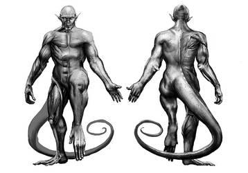 Kerberos Productions: Tarka Anatomy by LindseyWArt