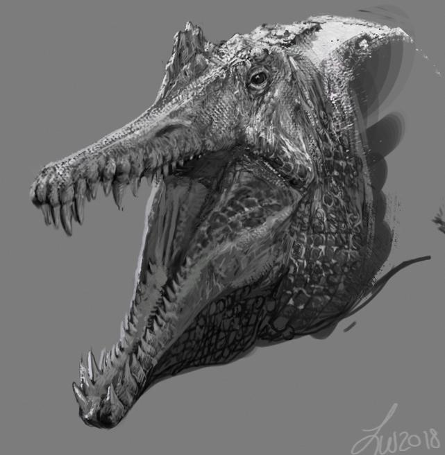 Sketch 08292018 - Spinosaurus by LindseyWArt