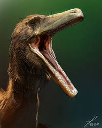Dinovember: Austroraptor by LindseyWArt