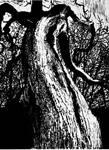 Big Tree finished by shaunsheep