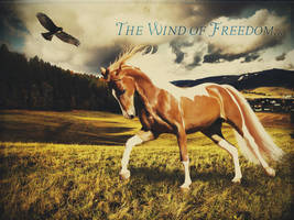 The Wind of Freedom... by letrainfalldown