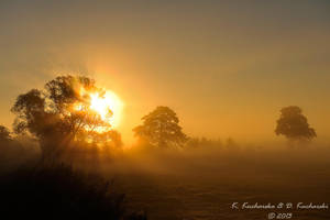 Sun beams by Dark-Raptor