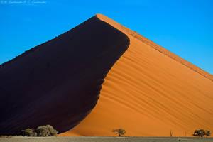 Dune by Dark-Raptor