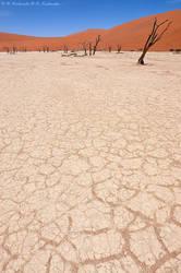 Dry land by Dark-Raptor