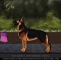 Ch. GDK's September Song by Runestorm-kennel