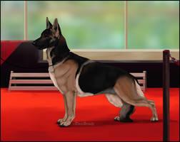 National Dog Show- Kinara by Runestorm-kennel