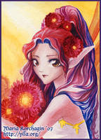 ACEO 5 : Red Gerbera Daisy by maria-jaujou