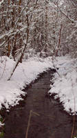 November Snow 09 by mattyhex