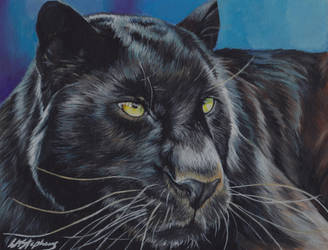 Black Panther by Lorna-Marie