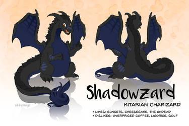 Shadowzard by Rikkoshaye