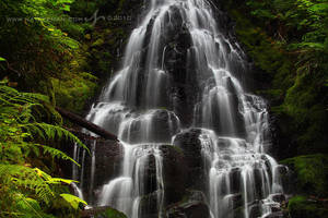 Fairy Falls by Nate-Zeman