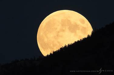 Harvest Moon by Nate-Zeman