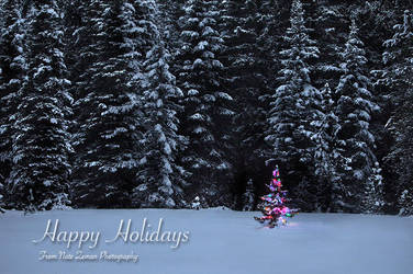 Happy Holidays! by Nate-Zeman