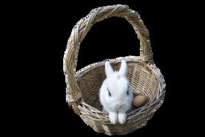 Cadbury Bunny PRECUT PNG Stock by Tris-Marie