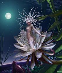 Dama de noche by Varges