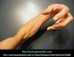 Morf-Stock Handy by Morf-stock