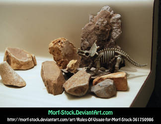 Dinorocks 2 by Morf-stock
