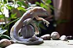 Eelguana - 3D print - Photoshoot by Verokomo