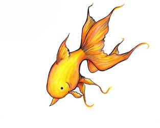 Goldfish by breatheout