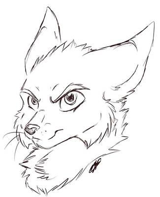 The Dark Fox by TheDarkFox778