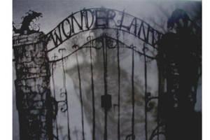 Wonderland by babalisme
