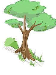Tree sketch 1 by watanabe1