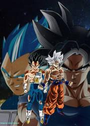 Goku and Vegeta Ultra Instinct by luckyal77