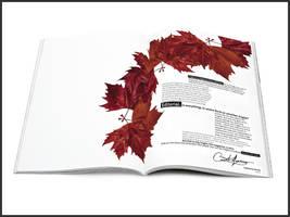 Fragile magazine by catherineharvey