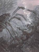crabby by RMBDarkmyth