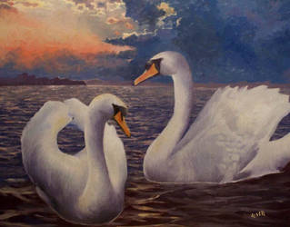 More swans by RMBDarkmyth