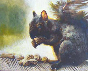 Nutsy by RMBDarkmyth