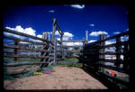 corral by whydoidothis
